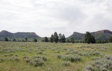 Bears Ears National Monument is in Crisis