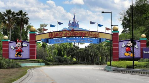 Disney World in Orlando, Flordia