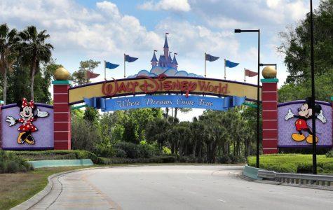 Disney World in Orlando, Flordia