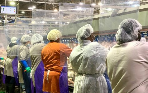 Tyson Food Workers at a plant in Camilla, Georgia. Photo from Tyson Foods via AP.