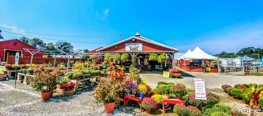Stony Hill Farm in Chester. Photo courtesy of NJ Route 22.
